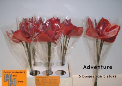 Adventure-6-tot-9cm